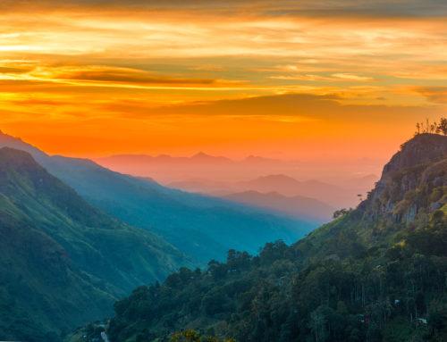 11 Reasons to visit Sri Lanka immediately